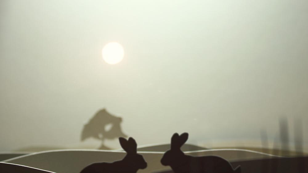 Tele-Rabbits