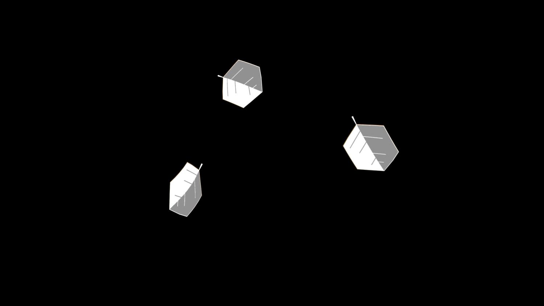 Kantar-6